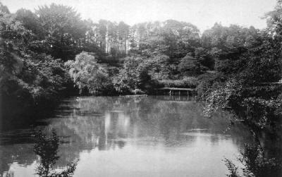 ガマ池 昔